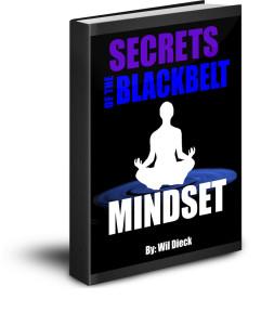 Secrets 3D cover